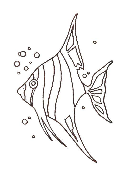 desenhos de animais marinhos painel criativo