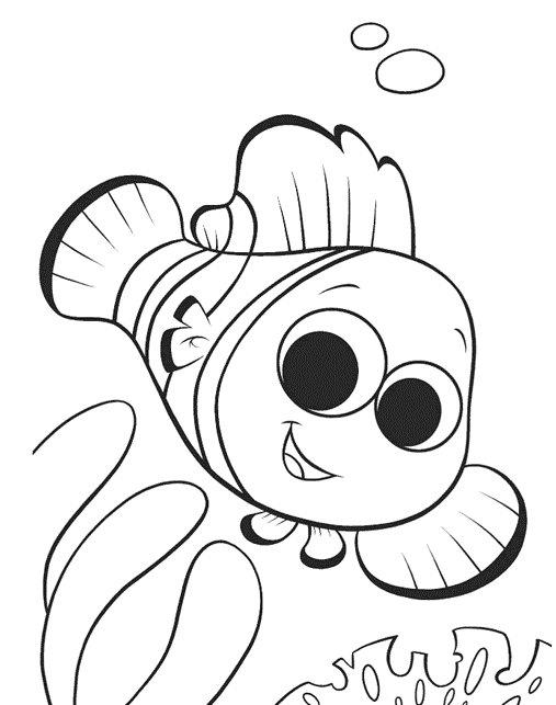 Veja Alguns Desenhos De Peixes Para Colorir Ou Para Montar Cartazes E