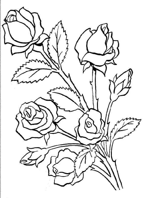 desenhos flores pintura quadros caixinha pano de prato potinhos (6)