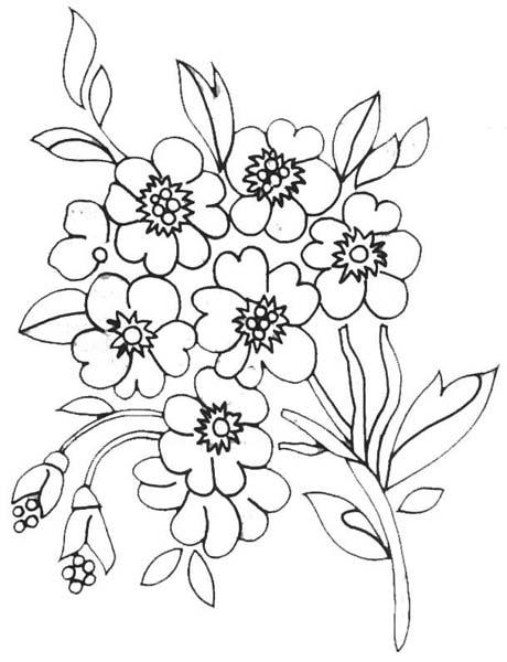 Desenhos Flores Pintura Quadros Caixinha Pano De Prato Potinhos  7