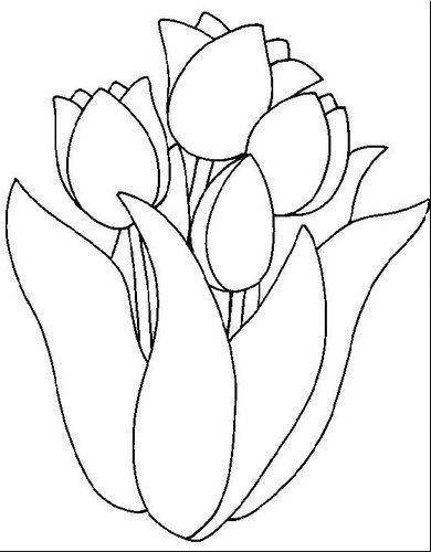 desenhos de tulipas pintura (1)