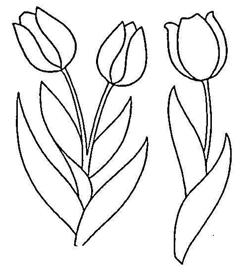 De tulipanes para colorear - Imagui