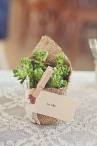 7 ideias lembrancinhas casamento criativas suculentas